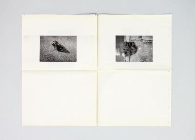 Michalis Pichler, Some Fallen umbrellas and something else (Marseille: UL(S), 2008).