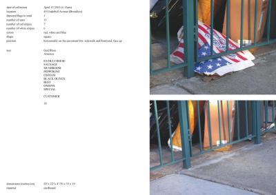 Michalis Pichler, stars & stripes / new york garbage flag profile 2 (Frankfurt: Revolver, Contemporary Art Publishing, 2005).