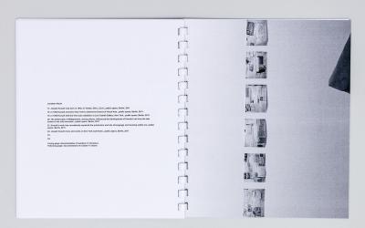 "Michalis Pichler, JANUARY 5–31, 2012 (Berlin: ""greatest hits"", 2012)."