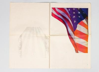 Pichler Michalis, New York Times Flag Profile (New York: self-published, 2003).