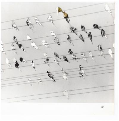 Michalis Pichler, migration #115