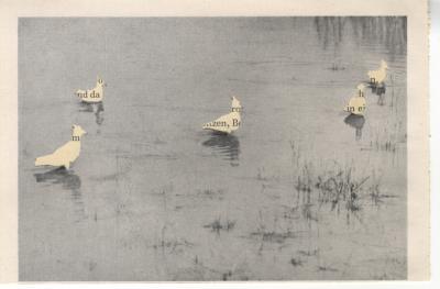 Michalis Pichler, migration #194