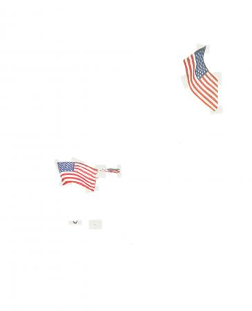 NEW YORK POST flag profile, page 71, Michalis Pichler, 2002